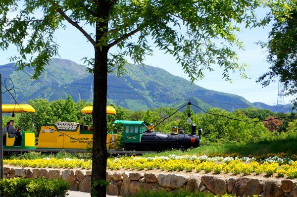 日野町の観光スポット「ブルーメの丘」