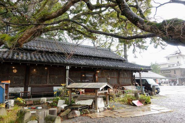 朴(もく)の外観。神社の境内にあり、神聖でのんびりとした雰囲気です。
