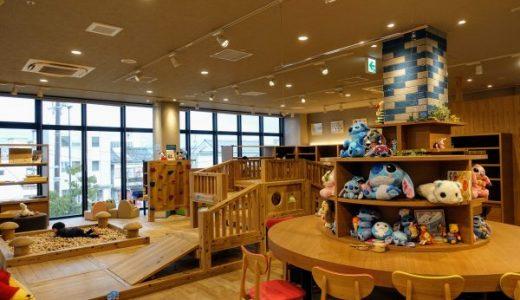 長浜の遊び場エキマチキッズランド|料金・アクセス・遊具情報
