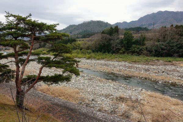 露天風呂からの景色。愛知川と川沿いに並ぶ松が日本らしくて良いですね。