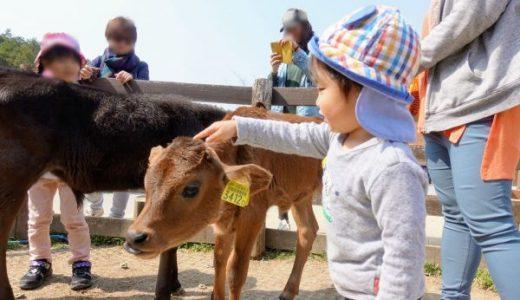 観光農園 伊賀の里モクモク手づくりファームが楽しかった!料金・アクセス・食事の感想